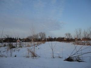 bolman 21 02 2012
