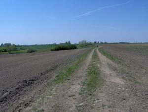 vinogradska lenija 20.04.2007.